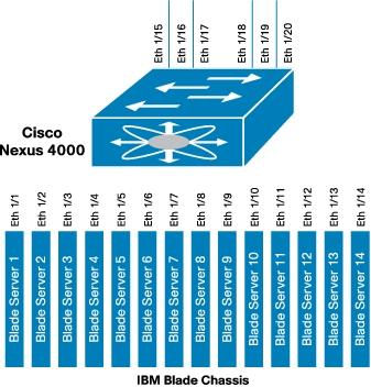 show flogi database